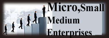 micro,small and medium enterprises